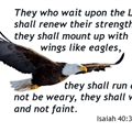 isaiah 40-31 eagles wings white bkgd.png